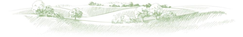 Illustration showing fields